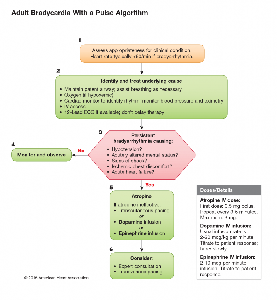 Bradycardia with a pulse