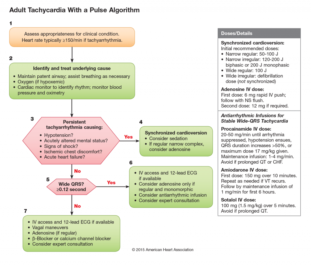 Tachycardia with a Pulse